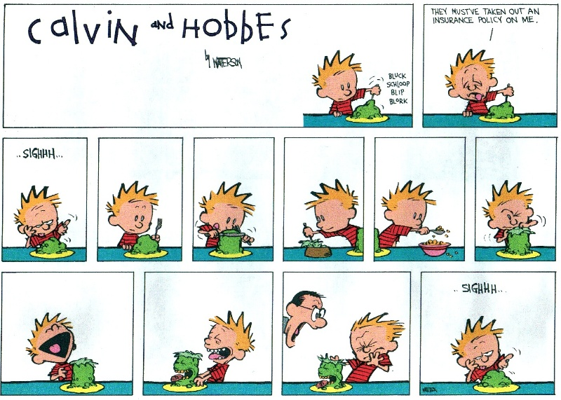 Index Of Chcalvin And Hobbes Complete1991